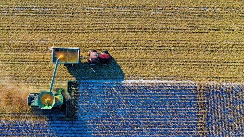 فواید گوگرد در خاک های کشاورزی
